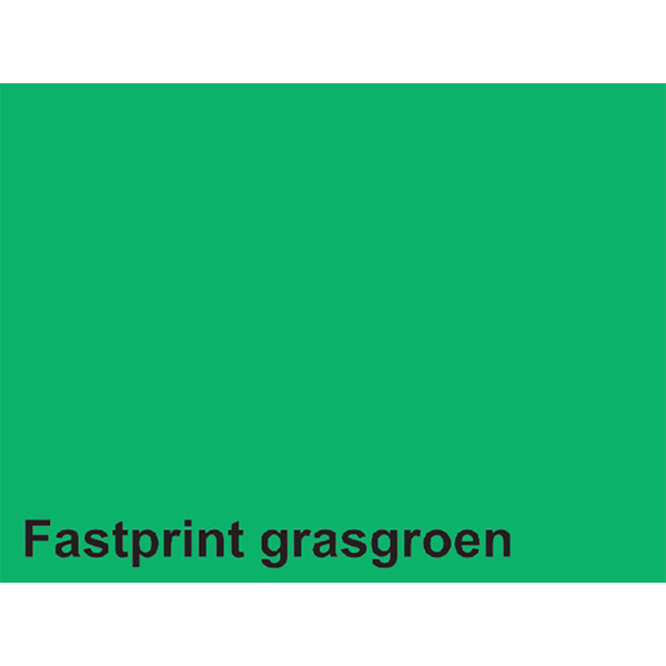 kopieerpapier Fastprint A4 160gr 250vel grasgroen